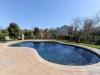 kidney shaped pool design