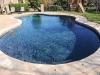 Free Form pool, Kidney Shaped pool